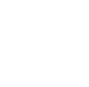 Healthy Performance